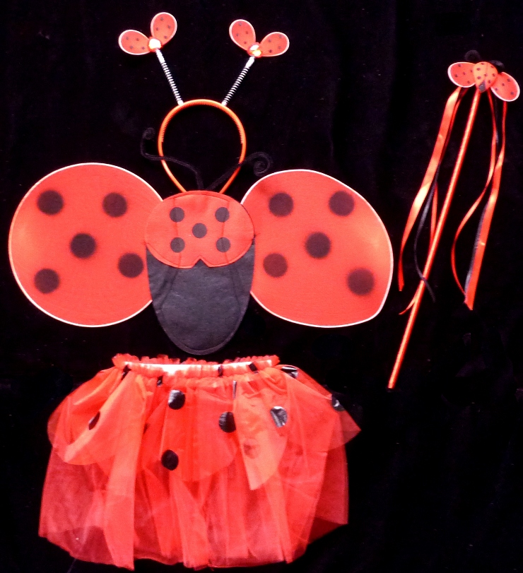 lady-bug-costume