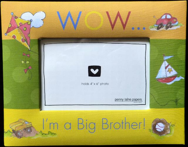 Big Brother and Big Sister Sibling Gifts